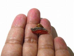 紅鮭 ピン【Palnart Poc/パルナートポック】